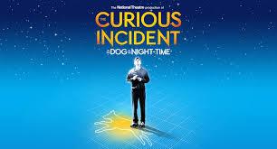 'Curious Incident' portrays unique perspective of autism